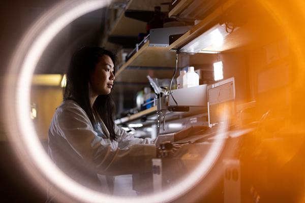 Ph.D. student Erin Saito enters data into a computer in the lab of Professor Benjamin Bikman. Photo by Jaren Wilkey.