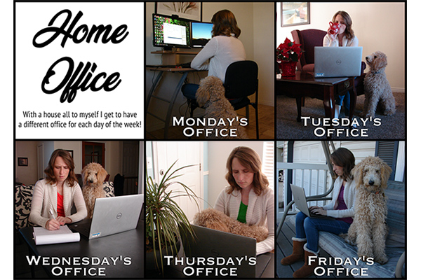 Sarah Wald shows off her home offices, different locations in her house that she uses, with her dog, each weekday.